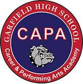 Career and Performing Arts Academy